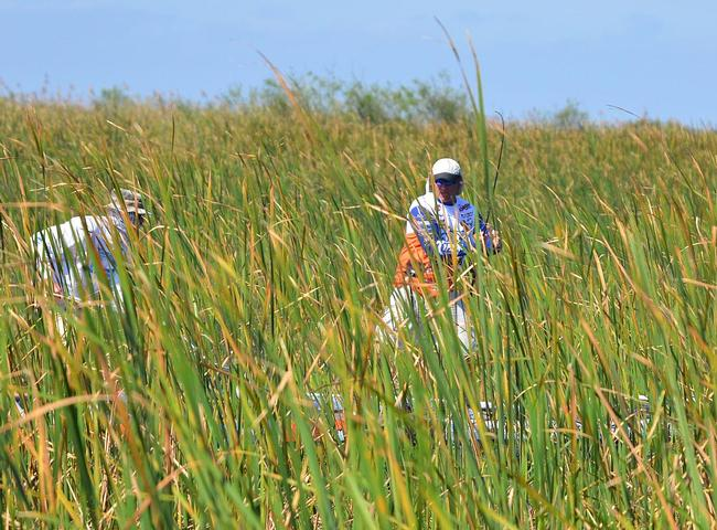 Greg Bohannan lifts a bass out of the thick reeds.