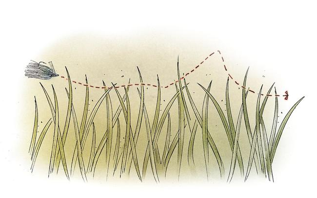 /tips/2014-03-10-swim-jigging-winter-grass-lines