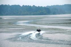 The grass is coming back strong at Rayburn as boats once again have to navigate trails through the matted hydrilla.