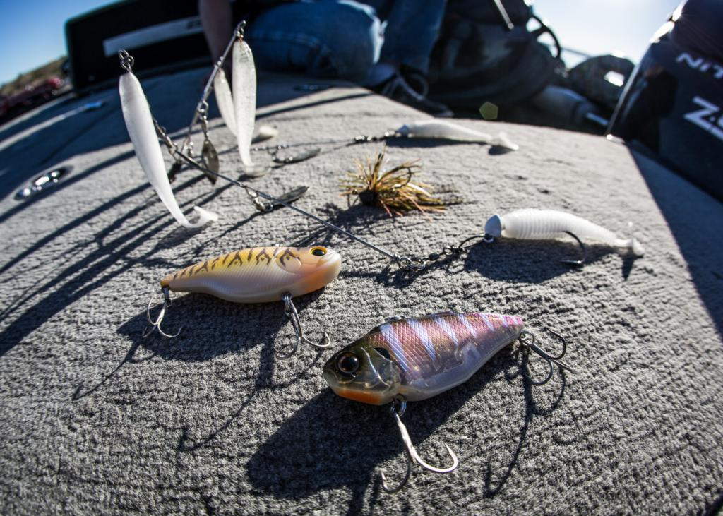 Gallery top 10 baits from havasu flw fishing articles for Best fishing in arizona