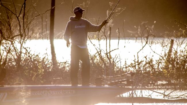 Andy Morgan flipping in heavy cover on day three of the Walmart FLW Tour on Beaver Lake.