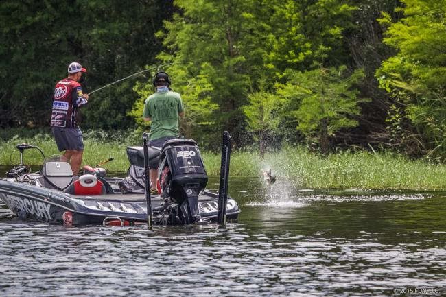 Gussy watches this fish go airborne within feet of the boat after slamming his topwater.