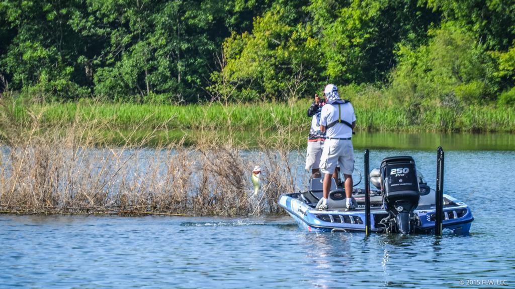 Shallow patterns from chickamauga flw fishing articles for Chickamauga lake fishing