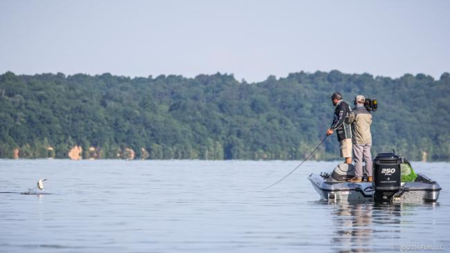 Pickwick lake day 4 coverage flw fishing articles for Gross reservoir fishing