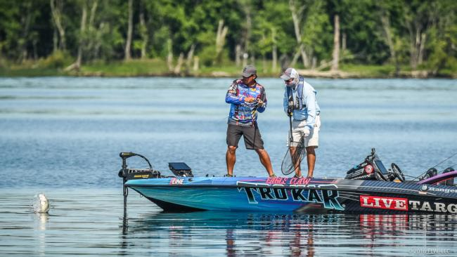 Early reports from wheeler flw fishing articles for Wheeler lake fishing report