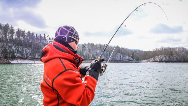 Fishing the damiki rig in winter flw fishing articles for Winter fishing gear
